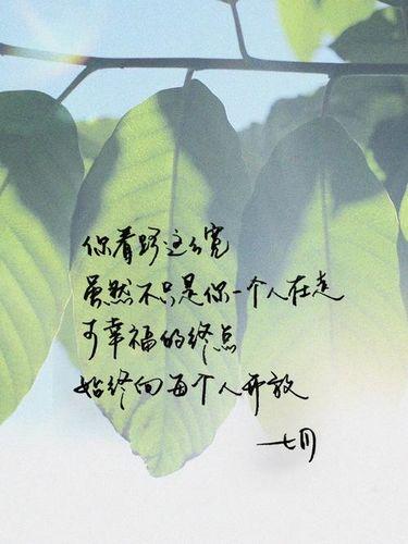文艺温暖人心的句子 收集一些温暖人心的句子