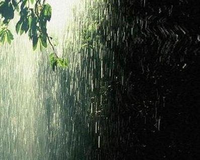 下雨伤感句子 下雨的唯美伤感的句子成一段