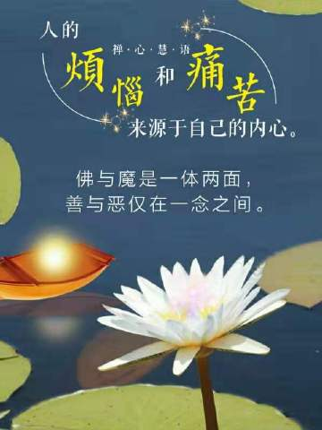 莲的佛语禅心 佛语禅心有什么区别?