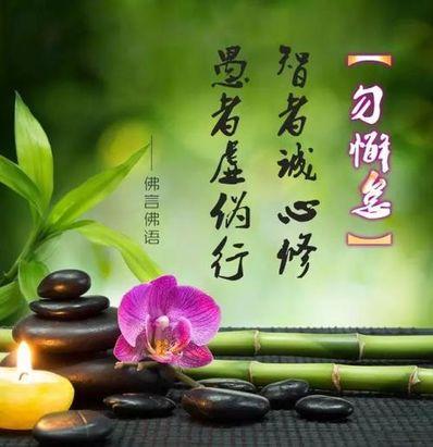 佛家赞美莲花的佛语 佛教中莲花的含义?
