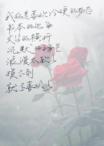 形容一段话治愈系 给我点治愈系的语言,适合生活中安慰人的