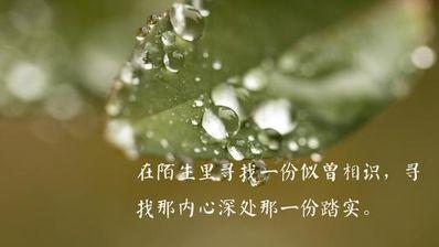 治愈自己的说说心情句子 说说心情人生句子大全