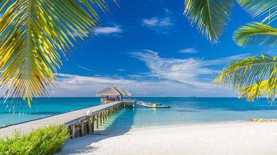 美丽的海滩的诗句 赞美海边的诗句有哪些?