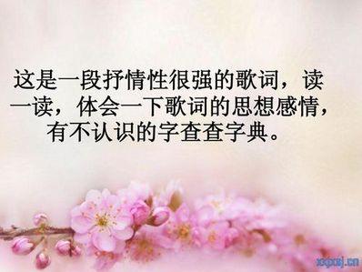 抒情性的句子摘抄 求抒情句子(摘抄,不要爱情类)