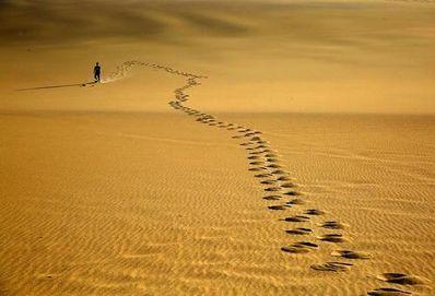 人生旅途哲理感悟 感悟人生旅途遇到的风景